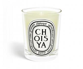 Standard Candle Choisya